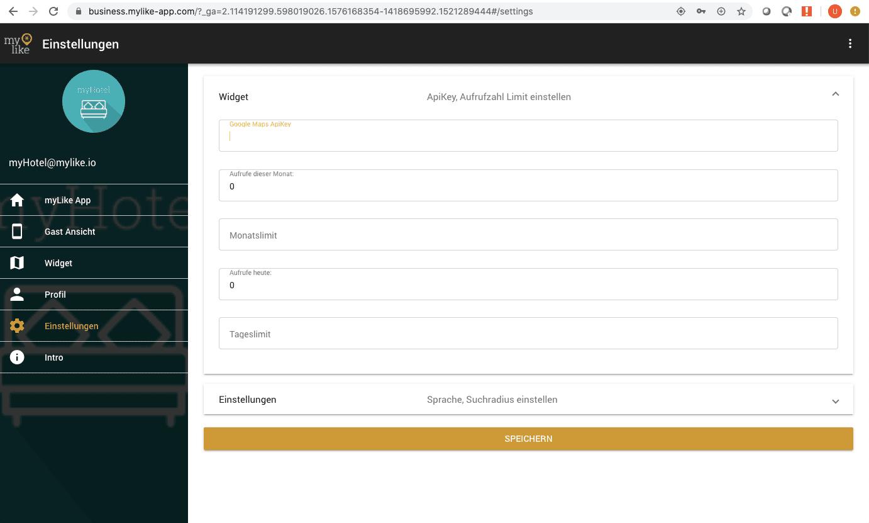 Google API eingeben